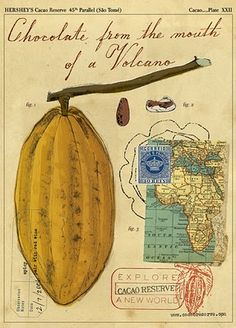 Chocolate from Africa Map