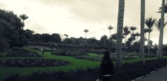 Jardin Botanico -Bogota Colombia Photography, Bogota Colombia, Photograph, Fotografie, Photoshoot, Fotografia