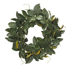 "Magnolia Wreath 28"" (GW02): Magnolia Wreath, 28"""