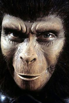 Pierre Boulle, Plant Of The Apes, Post Apocalyptic, Planets, Mystery, Sci Fi, Hero, Film, Tv