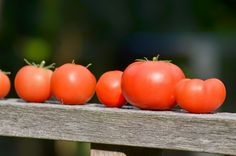 Wecken en inmaken: Tomatenchutney met komkommer