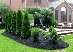 Patio Privacy Landscaping Ideas