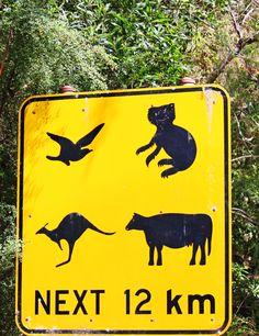 Australian traffic sign #travel #Down Under #smileshare