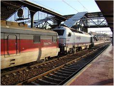 """Estación Valladolid Campo Grande. ADIF.  Imágenes del Talgo Grandes Líneas y del furgón """"Manso"""" arrastrados por la locomotora 334 diesel RENFE."""
