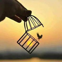 Let it go  ✨