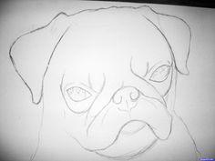 realistic draw drawings step pug eye animals drawing easy animal pencil sketches bing eyes cool dog sketch found dragoart
