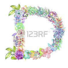 alfabeto de flores aisladas sobre fondo blanco: Capital letter D of watercolor…