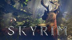 Skyrim in a Nutshell #games #Skyrim #elderscrolls #BE3 #gaming #videogames #Concours #NGC