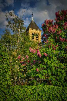 Montchauvet, Yvelines • Jerome Duval