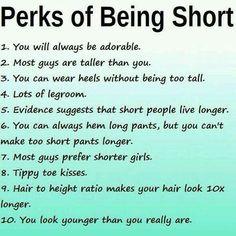 Perks of being short short girl quotes, short people quotes, short people humor, Short People Humor, Short People Quotes, Short Girl Quotes, Short People Problems, Short Girl Problems, Short Jokes, Short Funny Quotes, Asian Problems, Short Fille