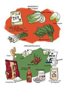 Kimchi infographic ingredients South Korean Food, Korean Street Food, K Food, Food Art, Mushroom Zucchini Recipe, Korean Dessert, Korean Dishes, Food Photography Tips, Learn Korean