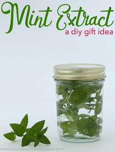 Mint Extract is an easy to make, inexpensive but unique DIY Gift idea perfect for Christmas or hostess gifts!
