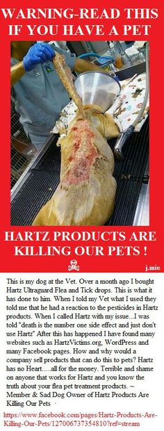 WHY WOULD A HARTZ DO THIS TO THESE POOR INNOCENT ANIMALS!?!?!?!?!?!?!?!?!?!?
