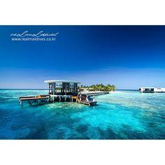오늘은 날씨도 하늘도 맑을 것 같아요. 오늘 하루도 힘내서 시작해보자구요~  아침엔 환한미소로, 낮엔 활기찬 열정으로, 저녁엔 편안한 마음으로.  오늘도 멋진하루보내세요! #리얼몰디브 #Goodmorning #몰디브여행사
