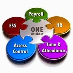 Cut Down Your HR Expenses with EmployWise