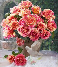 Malerrose® 'Claude Monet®' amazing