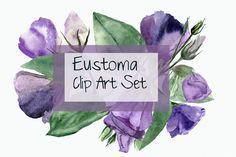 Eustoma Clip Art Set + Wreath by Tati Bordiu on @creativemarket