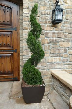 Artificial Front Porch Topiary pertaining to Artificial Plants For Front Porch Porch Topiary, Topiary Decor, Outdoor Topiary, Topiary Plants, Topiary Trees, Outdoor Plants, Garden Planters, Outdoor Gardens, Topiaries
