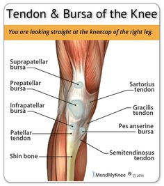 10 of the best exercises for knee pain health motivation knee tendonitis pain areas ccuart Gallery