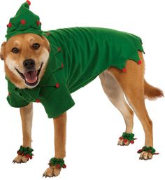 Rubies Elf Costume