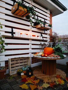 Mon jardin d' Automne aux airs d'Halloween avec BACSAC