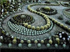 A superior Cactus and Succulent garden design. Very drought resistant too - a garden like this can thrive on a miniscule amount of water. #greatgardendesign  Found via Pick-A-Pepper.com