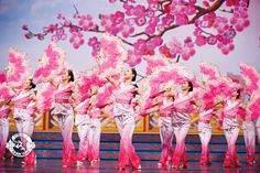 In Chinese culture, the plum blossom is a symbol of courage; it blooms in the midst of winter, braving frost and bitter cold, reminding us that even during the darkest hour, spring is just around the corner.  Photo: Plum Blossom, 2011. #dance