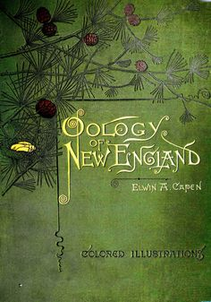 """Elwin A. Capen 1886 """"Oology of New England: A Description of the Eggs, Nests, and Breeding Habits of the Birds Known to Breed in New England"""""""