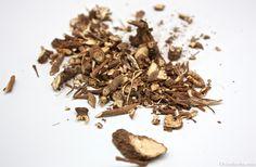Chai Hu (Radix Bupleuri / Bupleurum)