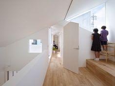 complex house|実績紹介|畑友洋建築設計事務所