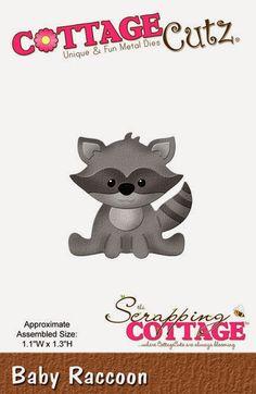 Baby+Raccoon.jpg (432×663)