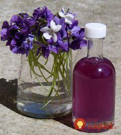 Kým pre niektorých súsymbolom nastupujúcej jari snežienky, iní si toto ročné obdobie nedokážu predstaviť bez fialiek. Prezradí ich nielen nápadná farba, ale predovšetkým nezameniteľná vôňa, ktorá sa nesie vzduchom široko-ďaleko. Málokto však vie, že fialka, ľudovo známa aj ako sirôtka,patrí medzi naše najstaršie liečivé bylinky. Zmieňovalsa o nej už grécky botanik Dioscorides či rímsky autor...