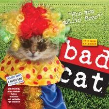 The Top 5 #BadCats of YouTube... #CatsofPinterest #Cats