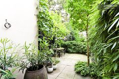 The small, but lush garden is accessable from both the kitchen and the Master Bedroom..