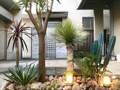 画像に含まれている可能性があるもの:植物、木、屋外 Formal Garden Design, English Garden Design, Tropical Garden Design, Japanese Garden Design, Garden Boxes, Garden Planters, Small Space Interior Design, Dry Garden, Rooftop Garden