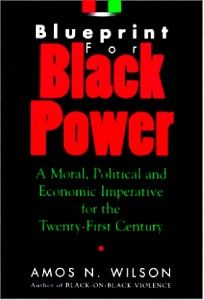 Blueprint For Black Power  Dr. Amos Wilson  [Instant Audio Download]