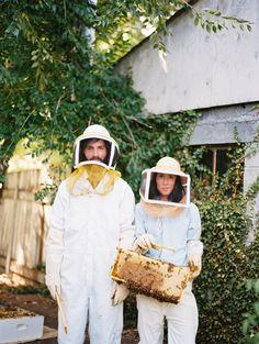 David + Sarah | Honey harvest