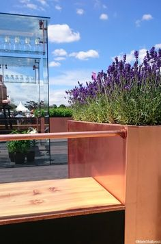 lavender, copper planter, botanical studio garden -- RHS Hampton Court Flower Show 2016  -- http://plews.gd/29tulpx