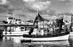 Malamok dans le port de Lesconil, années 50