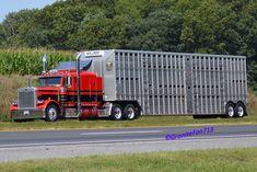 Peterbilt 379 Cattle Hauler