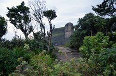 Pedra Bonitahttp://vejario.abril.com.br/materia/cidade/dez-sugestoes-de-trilhas-de-nivel-facil-e-medio-no-rio_