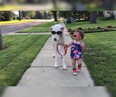 Çocuğunuza hayvan sevgisi aşılamak sizin için ne kadar önemli?