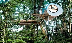 The Djuren treehouse in Germany has a lower and upper terrace spreading across two oak trees; the top terrace is nearly 20ft off the ground