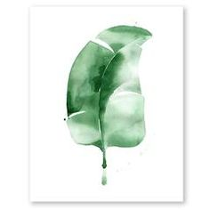 Banana Leaf no.3 Print | The Aestate
