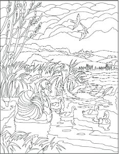 the 30 best creatively calm coloring pages images on pinterest