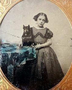 Victorian MinPin portrait