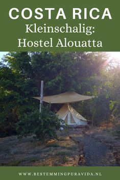 Costa Rica, Hostel, Places To Visit, Patio, Outdoor Decor, Yard, Terrace