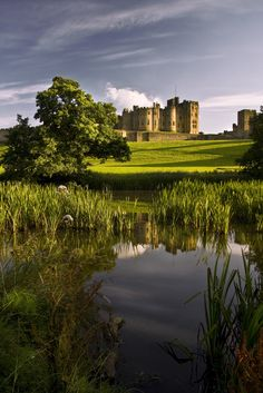 Alnwick Castle, Northumberland, England. Three facts: I've been here, Harry Potter was filmed here, and my dad grew up here...not in the castle obviously