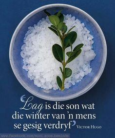 Lag is die son wat die winter van 'n mens se gesig verdryf Evening Greetings, Afrikaanse Quotes, Jesus Quotes, True Words, Beautiful Words, Hart, Victor Hugo, Happy Relationships, Garden