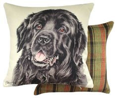 Newfoundland Waggy Dogz Cushion - A Bentley Cushions Draught Excluders, Printed Cushions, Novelty Socks, Bench Cushions, Rollerball Pen, Seat Pads, Cushion Pads, Newfoundland, Tapestry Wall Hanging